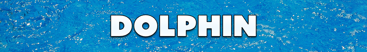 psm-banner-dolphin.jpg